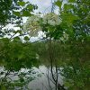 GKC 2012 - Mai - 13.05.2012 Lebringstausee